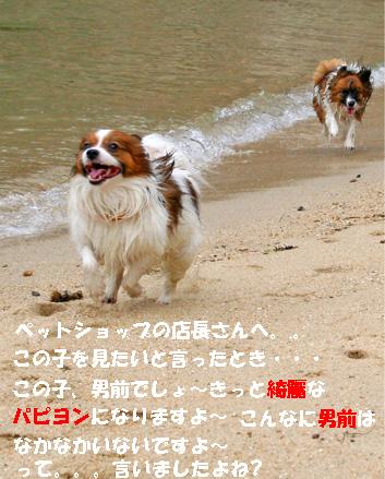 yuzukota070512-4.jpg