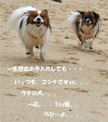 yuzukota070512-5.jpg
