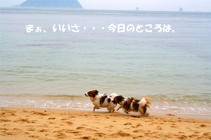 yuzukota070512-6.jpg