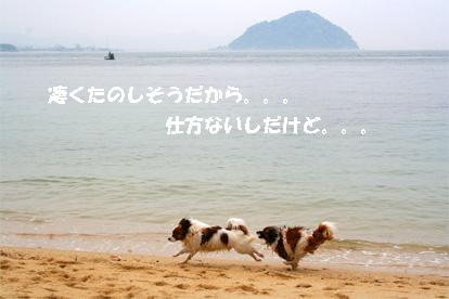 yuzukota070512-7.jpg
