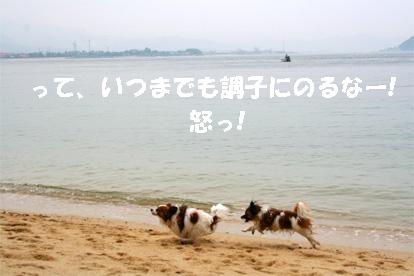 yuzukota070512-8.jpg