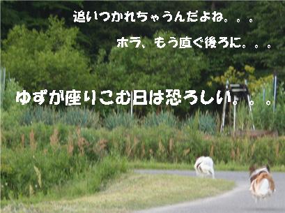 yuzukota070516-15.jpg