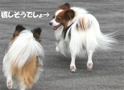 yuzukota070725-1.jpg
