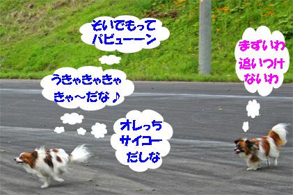 yuzukota070725-2.jpg