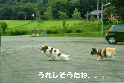 yuzukota070725-6.jpg