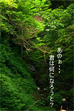 yuzukota070726-6.jpg