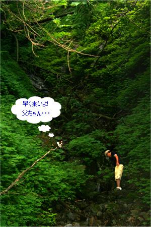 yuzukota070726-7.jpg