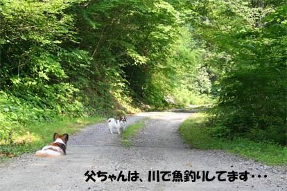 yuzukota070730-2.jpg
