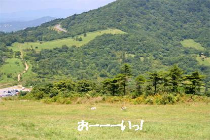 yuzukota070820-3.jpg