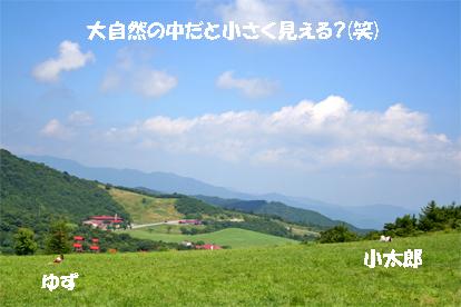 yuzukota070820-4.jpg