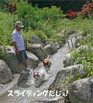 yuzukota070913-1.jpg