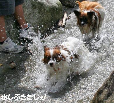 yuzukota070913-2.jpg