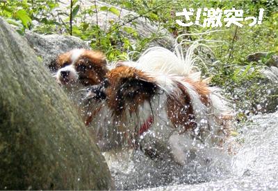 yuzukota070913-4.jpg