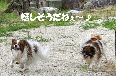 yuzukota070913-6.jpg