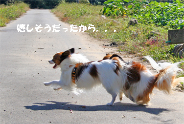 yuzukota071028-4.jpg