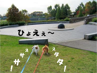 yuzukota071122-1.jpg