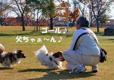 yuzukota071204-4.jpg