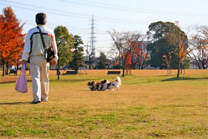 yuzukota071206-3.jpg