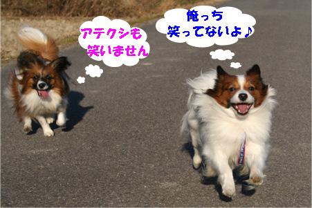 yuzukota080127-2.jpg