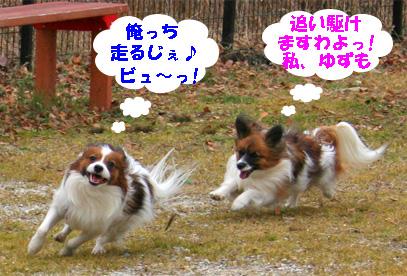 yuzukota080202-4.jpg