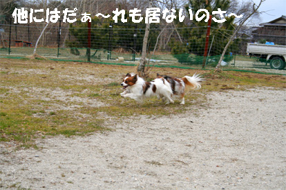 yuzukota080202-5.jpg