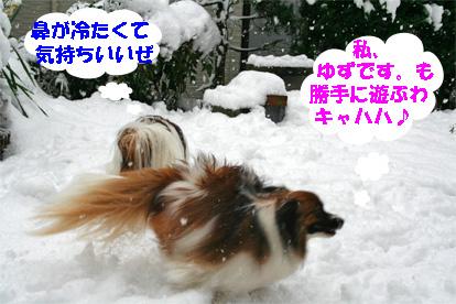 yuzukota080212-1.jpg