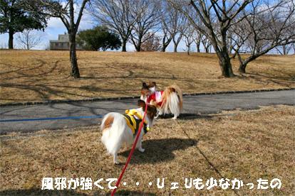 yuzukota080218-1.jpg