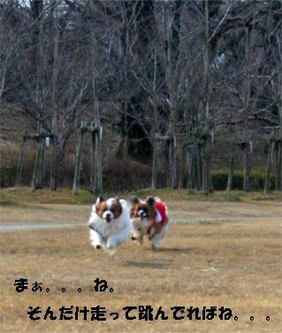 yuzukota080218-3.jpg