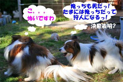 yuzukota080222-3.jpg