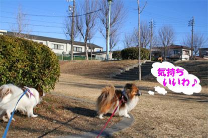 yuzukota080305-2.jpg