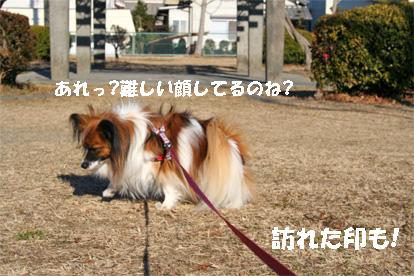 yuzukota080305-5.jpg
