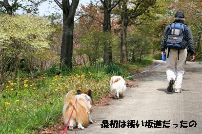 yuzukota080415-1.jpg