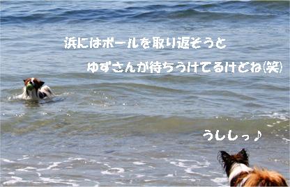 yuzukota080423-1.jpg