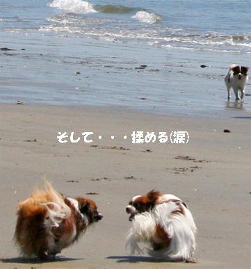 yuzukota080424-2.jpg