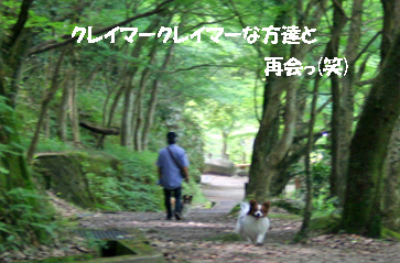 yuzukota080610-1.jpg