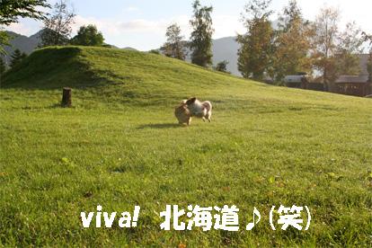 yuzukota080819-3.jpg