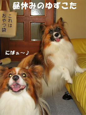 yuzukota080912-1.jpg