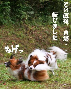yuzukota080928-5.jpg