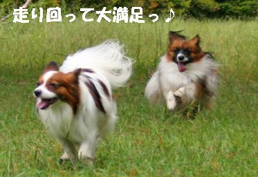 yuzukota081002-3.jpg