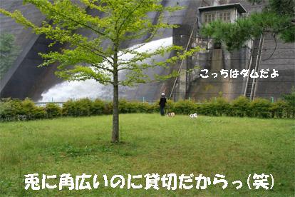 yuzukota081002-4.jpg