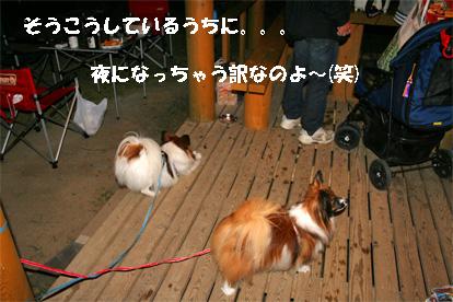 yuzukota081101-2.jpg