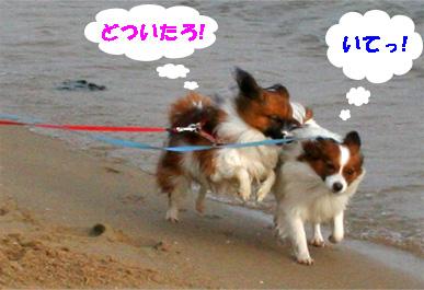 yuzukota081102-2.jpg