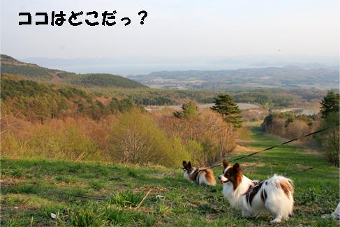 yuzukota090502-1.jpg