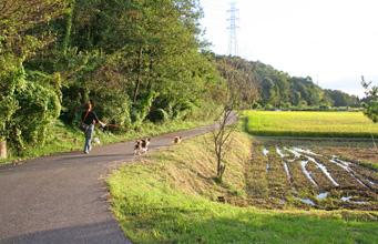 yuzukotabura061007-1.jpg