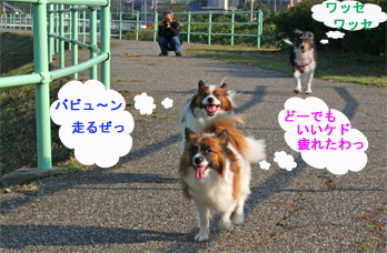 yuzukotabura061015-2.jpg