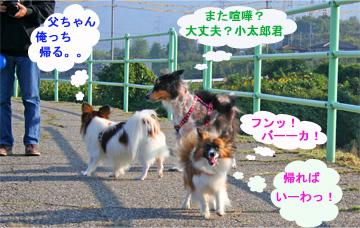 yuzukotabura061015-4.jpg