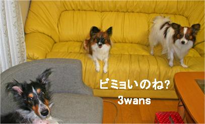 yuzukotabura061101-1.jpg