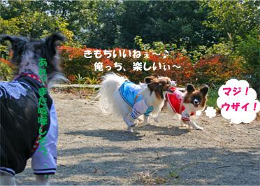 yuzukotabura061105-1.jpg