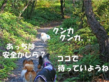 yuzukotabura061105-2.jpg