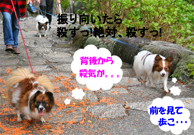 yuzukotasorachan071022-1.jpg